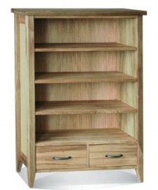 Windsor Bookcase 2 drawer by Telnita